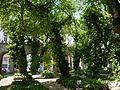 Budapest Große Synagoge Garten 2.JPG