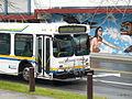 Bus A260001.JPG