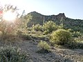 Butcher Jones Trail - Mt. Pinter Loop Trail, Saguaro Lake - panoramio (52).jpg