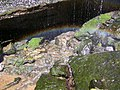 ButterMilk Falls Home of Mr. Rodgers - panoramio (6).jpg