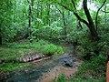 Buzzard Roost Spring Run - panoramio.jpg