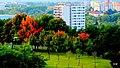 Bydgoszcz widok miasta z mego mieszkania - panoramio (2).jpg