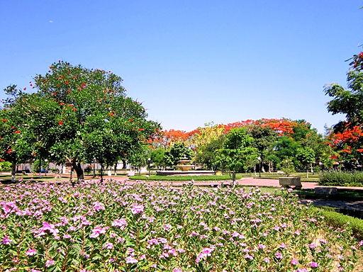 Công viên Nguyễn Văn Trỗi, 2