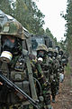 CBRN training with Portuguese Artillery Group (22274407618).jpg