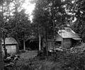 Cabane à sucre 1924 Mapleton.jpg