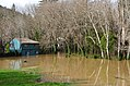 Cal Guard responds to floods 170111-Z-GJ033-001.jpg