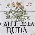 Calle de la Ruda (Madrid) 01.jpg