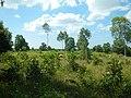 Cambodia 2014 - panoramio (24).jpg