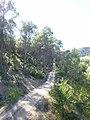 Camino cerca de La Terrera - panoramio.jpg