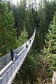 Capilano Suspension Bridge 2012 Winter (6845984680).jpg