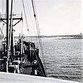 Cargo ship MS Illstein from the North German Lloyd bound for New Orleans on the Mississippi river - 1964.jpg
