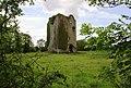 Castles of Connacht, Ballynahivnia, Galway - geograph.org.uk - 1953805.jpg