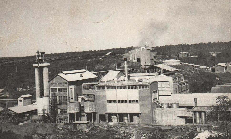 Celulosa Argentina SA 1960