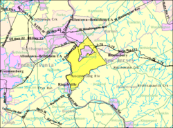 Census Bureau map of Pohatcong Township, New Jersey.