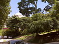 Centro Medico Docente La Trinidad (CMDLT) 2012 009.jpg