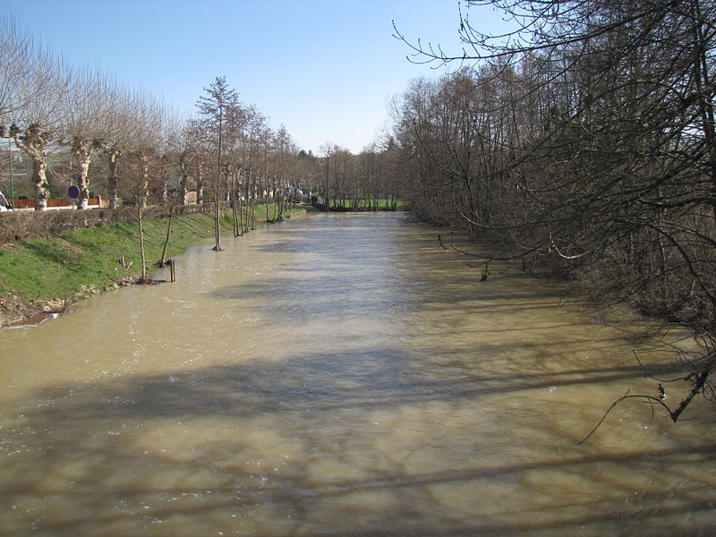 The Ouanne river in Charny, Yonne, North Burgundy, France; in the rue des Ponts, looking upstream. Light flooding on March 13, 1013.