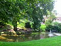 Chatham University Arboretum - IMG 7662.JPG