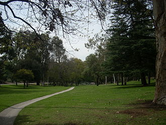 Chavez Ravine Arboretum - View of the trees