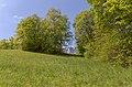 Chemin du Sabot Trois Pucelles Nid.jpg