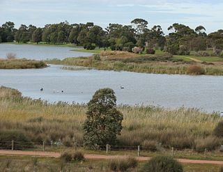 Cherry Lake (Victoria) lake in Australia
