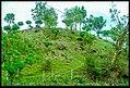 Chetru-Stupa-in-Kangra.jpg