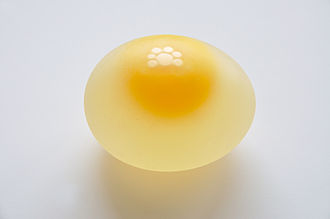 Egg as food - A raw chicken egg within its membrane, the shell removed by soaking in vinegar