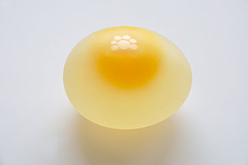 Chicken Egg without Eggshell 5859.jpg