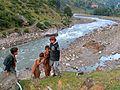 Children Of Kaghan Valley.jpg