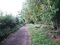 Chorleywood, Old Shire Lane - geograph.org.uk - 566497.jpg