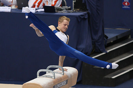 Chris Cameron on the pommel horse Christopher Cameron, 2010.jpg