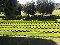 Cimitero militare Costermano3.jpeg
