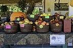 Cindy's Produce apples LR.jpg