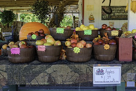 8 varieties of produce at Cindy's Produce