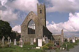 Claregalway Friary East View 1996 08 27.jpg