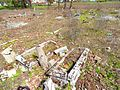 Cmentarz ewangelicki na Podgórzu w Toruniu (ul. Poznańska 313)2.jpg