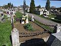 Cmentarz wojenny nr 342 - Łapanów 1.jpg