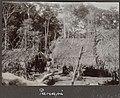Collectie NMvWereldculturen, RV-A102-1-186, 'Panapi'. Foto- G.M. Versteeg, 1903-1904.jpg