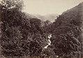Collectie Nationaal Museum van Wereldculturen TM-60062239 Landschap Jamaica fotograaf niet bekend.jpg