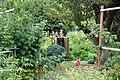 Colonel summers community garden.jpg