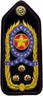 Comandante Geral PM - platina.PNG