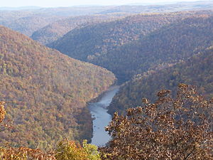 Cheat River - The Cheat River Gorge, as viewed from Cooper's Rock Overlook