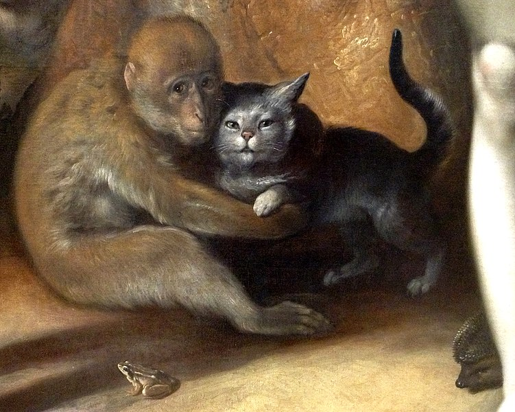 File:Cornelis Cornelisz. van Haarlem - The Fall of Man - Monkey, Cat, Frog, Hedgehog (detail),.jpg