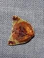 Cossedia sp. (Nolidae- Chloephorinae- Ariolicini) (4184378627).jpg