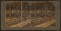 Cotton Mills, Dallas, Texas, U.S.A, by Singley, B. L. (Benjamin Lloyd).png