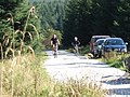 Cyclists in the Forest - geograph.org.uk - 987773.jpg