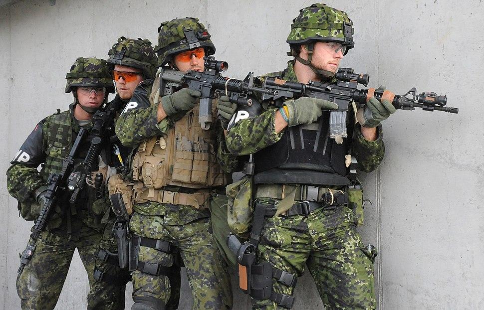 Danish Military Police