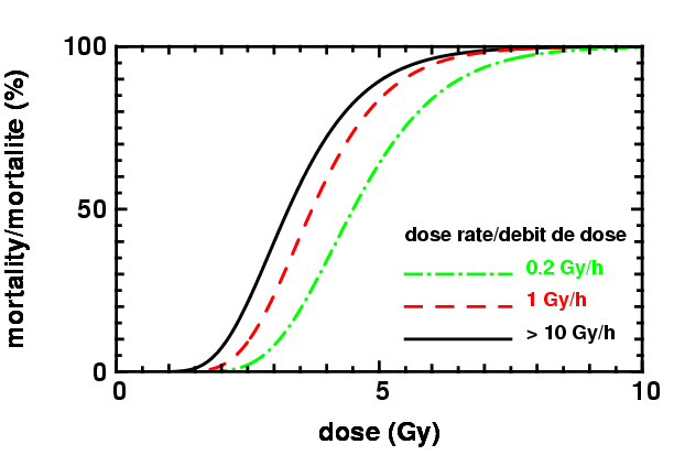 Death by haematopoietic syndrome of radiation sickness- influence of dose rate