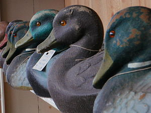 Decoy - Carved, wooden duck decoys