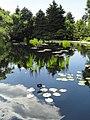 Denver Botanic Gardens - DSC00975.JPG