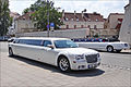 Des mariés partout (Vilnius) (7661194354).jpg